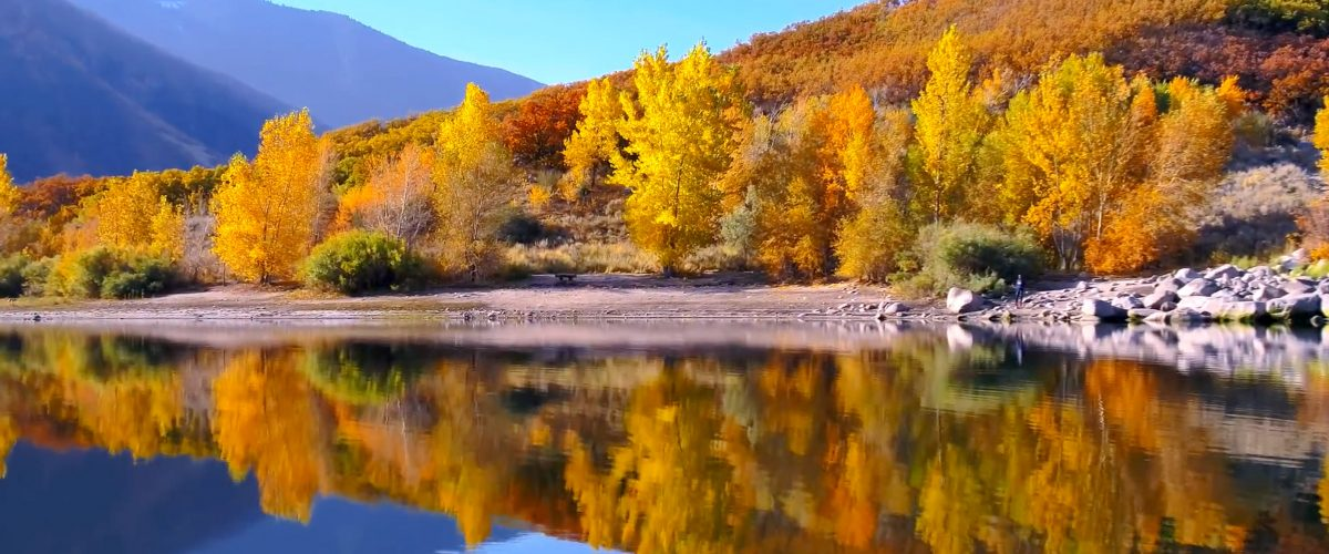 Utah, foliage
